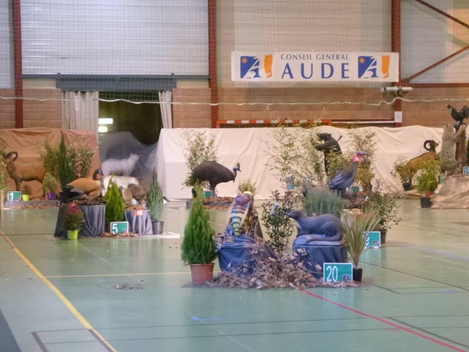 3D indoor Castelnaudary (23/02/19).