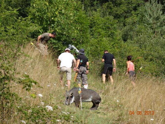 cueillette des champignons en Lozère